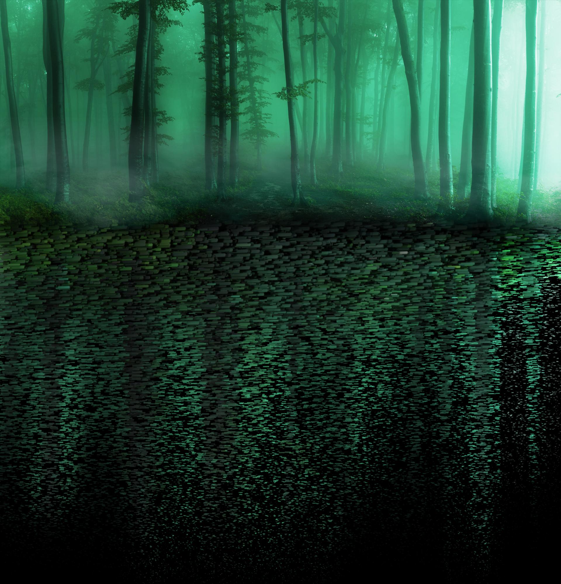 Zedwell_reflectiveForest_SceneA